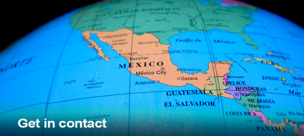 Mexican translator contact information